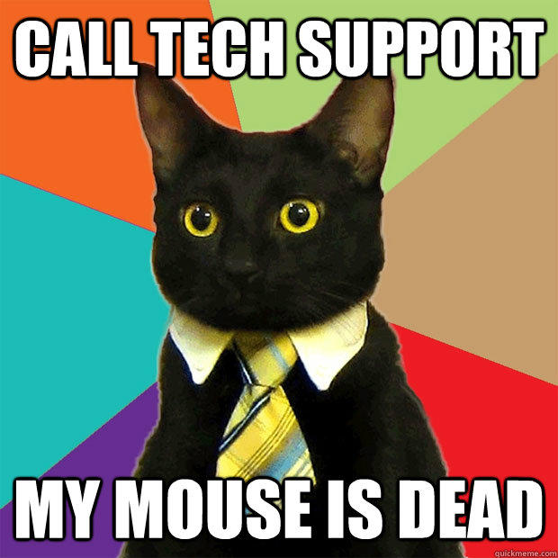 business-cat-call-tech-support