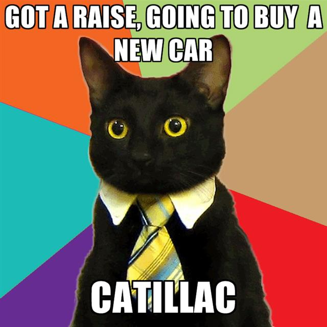 business-cat-catillac