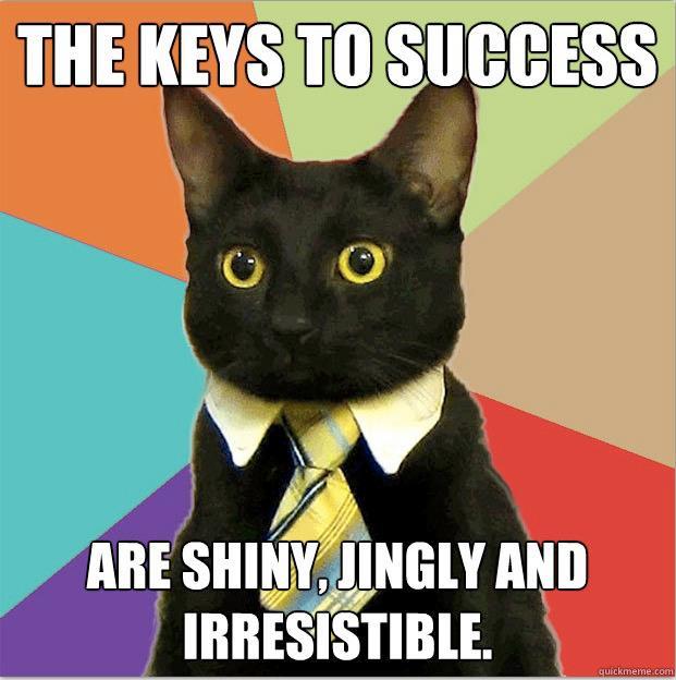 business-cat-keys-to-success