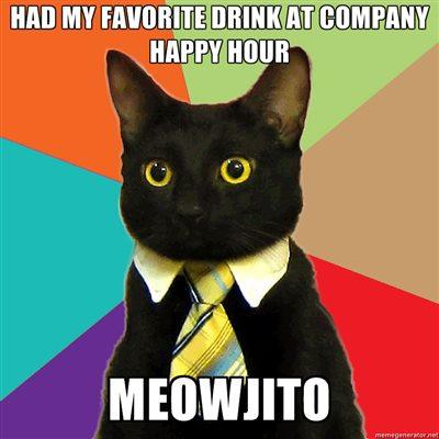business-cat-meowjito