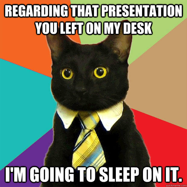 business-cat-sleep-on-it