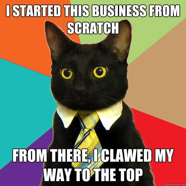 business-cat-started-from-scratch