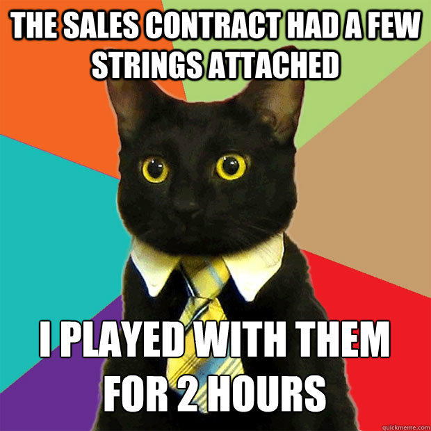 business-cat-strings-attached