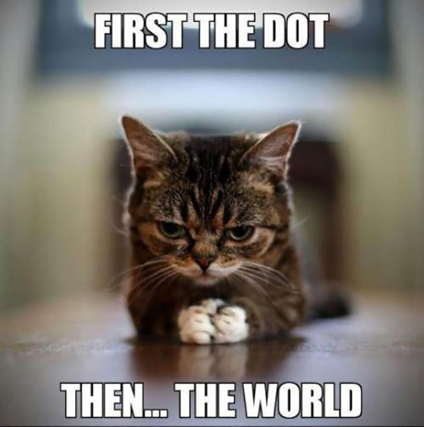 lilbub-first-the-dot-then-the-world