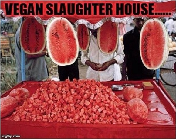 vegan-slaughterhouse